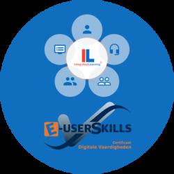 E-userskills